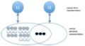Finkbeiner et al. Sense Model.png