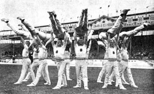 Finland at the 1908 Summer Olympics - Finland at the team event