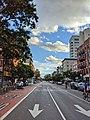 First Avenue Arrows (50190105501).jpg