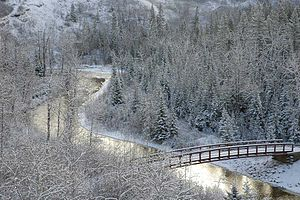 Fish Creek Provincial Park - Bridge over Fish Creek.