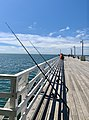 Fishing from Shorncliffe Pier, Queensland, 2020.jpg