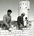 Flickr - Government Press Office (GPO) - group from germany building new houses.jpg