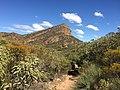 Flinders Ranges SA 5434, Australia - panoramio (167).jpg