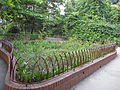 Flower garden at NDC-2.JPG