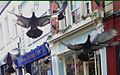 Flying pidgeons in Stroud.jpg
