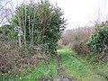 Footpath, Cripplestyle - geograph.org.uk - 1099926.jpg
