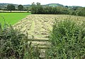 Footpath from Foscombe Hill - geograph.org.uk - 939716.jpg