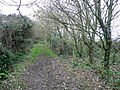 Footpath from Treglohan to the coast - geograph.org.uk - 1588514.jpg