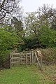 Footpath in Wrotham Park - geograph.org.uk - 1257746.jpg