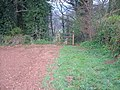 Footpath into wood - geograph.org.uk - 156335.jpg