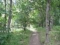 Footpath off Stratton Park, Rastrick - geograph.org.uk - 946210.jpg