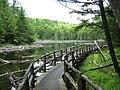 Forêt-la-Blanche - Lac aux Hérons.JPG