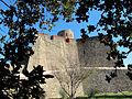 Fort Saint Elme.jpg