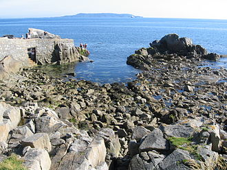 Forty Foot - Forty Foot in 2009