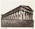 Fotografi av Tempio. Segesta, Italien - Hallwylska museet - 106722.tif