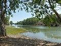 Four Mile Waterhole Wildman River.jpg
