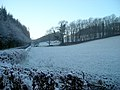 Frosty Hillside Near Riddingshill - geograph.org.uk - 638077.jpg