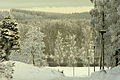 Frosty view.jpg