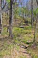 Fults Hill Prairie Nature Preserve-18apr14-055.jpg