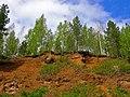 G. Nizhnyaya Tura, Sverdlovskaya oblast' Russia - panoramio - Oleg Seliverstov (4).jpg