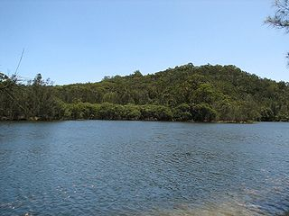 Garigal National Park Protected area in New South Wales, Australia