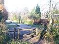 Gasden Copse - geograph.org.uk - 1172812.jpg