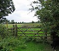 Gate and fields - geograph.org.uk - 230265.jpg