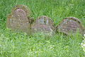 Gelnhausen Jüdischer Friedhof 90381.JPG