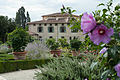 Giardino di Villa Medicea a Castello con veduta dell'Accademia della Crusca sullo sfondo..JPG