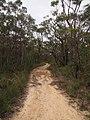 Gibberagong Trail - panoramio (9).jpg