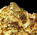 Gold-cat14d.jpg