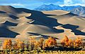 Gold Cottonwoods, Dune Shadows, and Cleveland Peak (22549599035).jpg