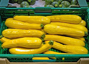 Zucchini - Golden zucchini produced in the Netherlands for sale in a supermarket in Montpellier, France in April 2013