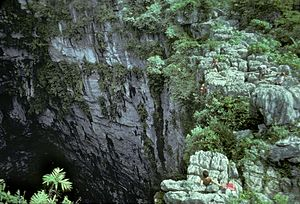 Cave of Swallows - Top of Golondrinas as viewed from the low side, during a descent made in 1979.