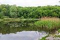 Goloseevsky Park. Orekhovatskie ponds, spring. 02.jpg