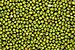 Green Mung Beans.jpg