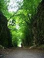 Green way - panoramio.jpg