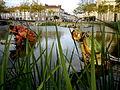 Grenouilles des Animaux de la place Napoléon à La Roche-sur-Yon.JPG