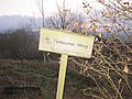 Grenzstreifen Ecklingerode4.jpg
