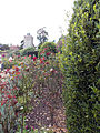 Greys Court 02 - garden with roses.jpg