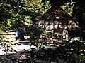 Grunewald - Paulsborn - geo.hlipp.de - 28123.jpg