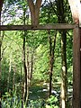 Hack Fall Wood geograph-2415360-by-C-P-Smith.jpg
