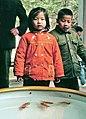 Hangzhou, Lingyin 1978 02.jpg