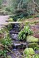 Harlow Carr Gardens - geograph.org.uk - 1158680.jpg