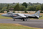 Harrier (5089676850).jpg