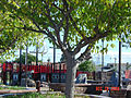 Harry M. Dotson Park, Stanton, California 2.jpg