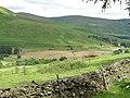 Heartstane - geograph.org.uk - 509765.jpg