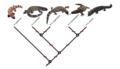 Heloderma-taxonomie.png