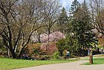 High Park, Toronto DSC 0255 (17367572636).jpg