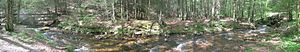 Bald Eagle State Forest - Panoramic view of Swift Run in the High Rock picnic area of Snyder Middleswarth Natural Area.